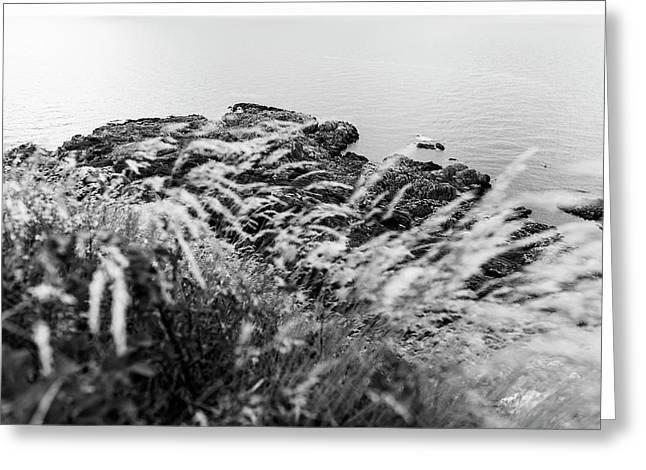 Cliffs At Kullaberg Greeting Card