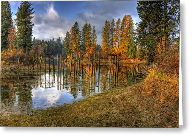 Cocolala Creek Slough Greeting Card