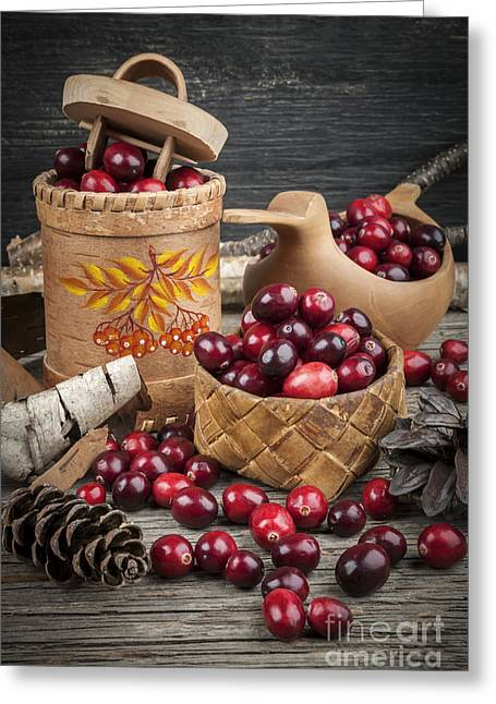 Cranberries Still Life Greeting Card by Elena Elisseeva