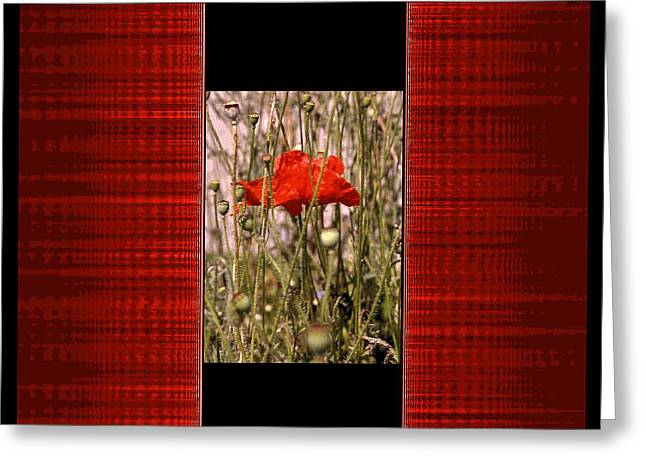 Digital Artistry Greeting Card