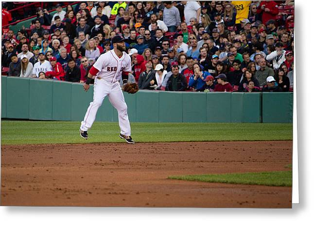 Dustin Pedroia Greeting Card by Monica Wellman