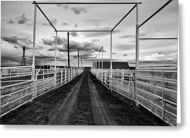 Empty Corrals Greeting Card by L O C