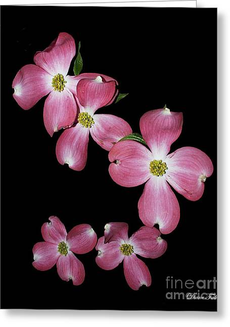 Flower Greeting Card by Diane Falk