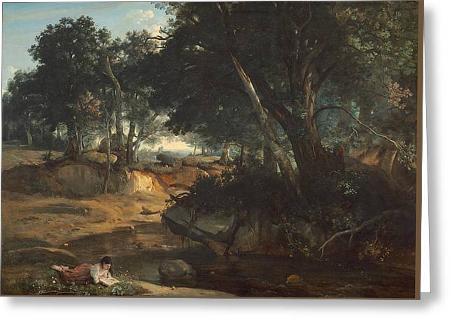 Forest Of Fontainebleau  Greeting Card