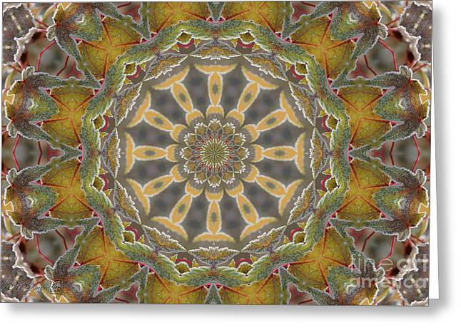 Frosted Maple Leaf Kaleidoscope Greeting Card by J McCombie