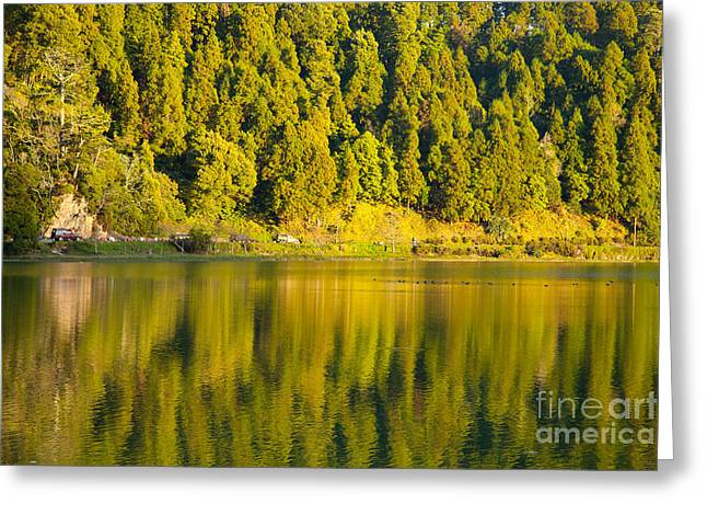 Furnas Lake Greeting Card by Gaspar Avila