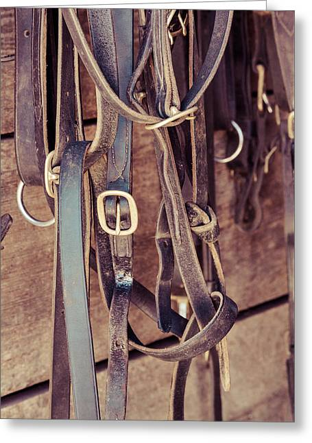 Horse Tack Greeting Card