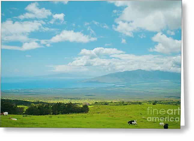 Kula Maui Hawaii Greeting Card by Sharon Mau