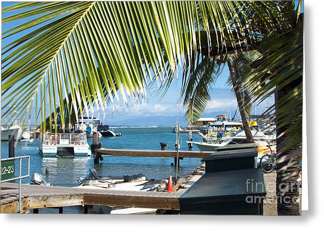 Lahaina Harbor Maui Hawaii Greeting Card by Sharon Mau