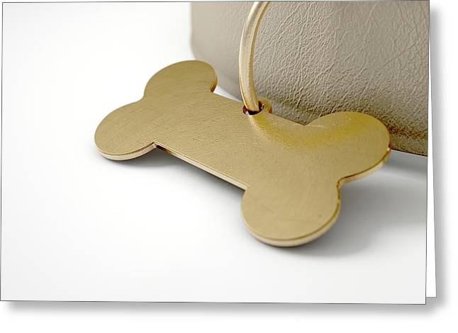 Leather Collar With Tag Greeting Card