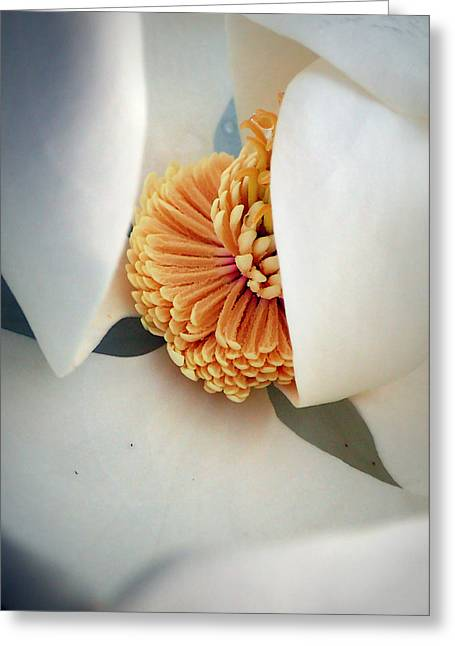 Magnolia Blossom Greeting Card