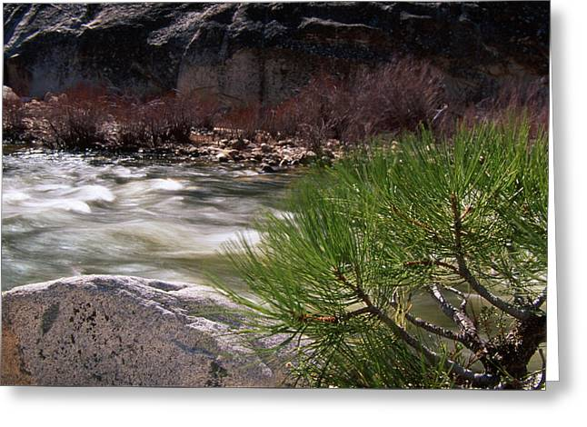 North Fork Kern River Greeting Card