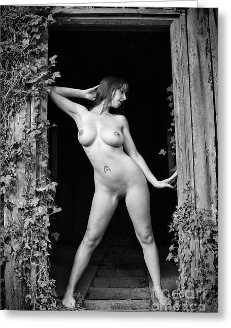 Nude Art Photography By Mary Bassett Greeting Card