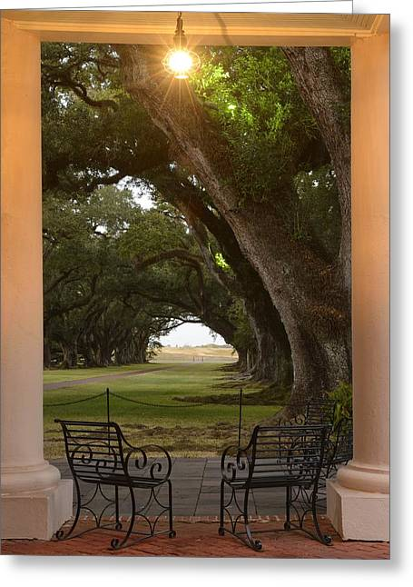 Oak Alley Greeting Card by Christian Heeb