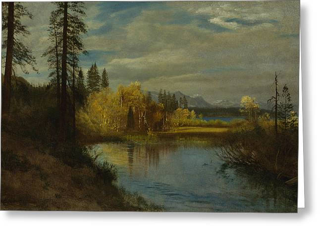 Outlet At Lake Tahoe Greeting Card by Albert Bierstadt