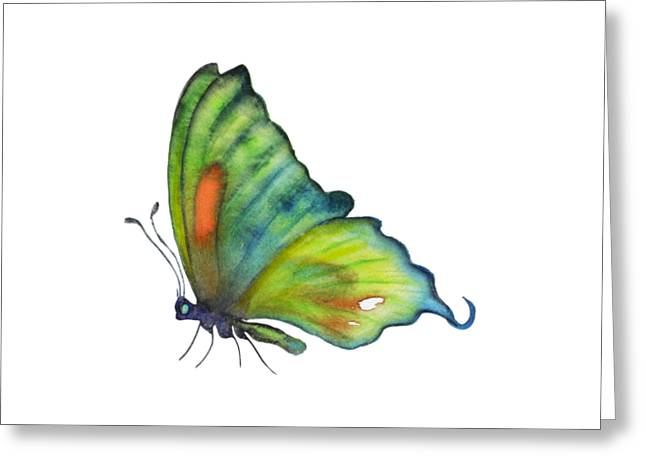 3 Perched Orange Spot Butterfly Greeting Card