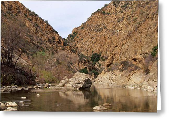 Piru Creek - Sespe Wilderness Greeting Card by Soli Deo Gloria Wilderness And Wildlife Photography