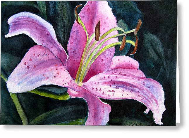 Pretty In Pink Greeting Card by Pat Vickers