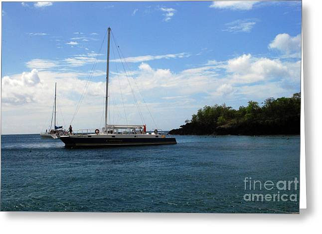 Greeting Card featuring the photograph Sail Boat by Gary Wonning