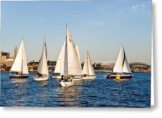 Sailboat Race Greeting Card by Tom Dowd