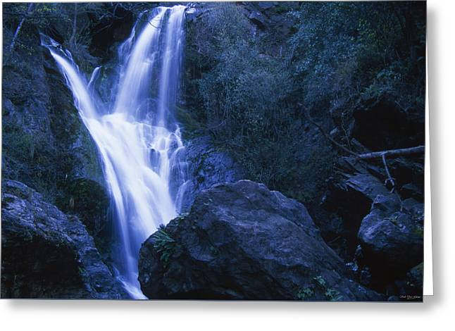 Salmon Creek Falls Greeting Card by Soli Deo Gloria Wilderness And Wildlife Photography