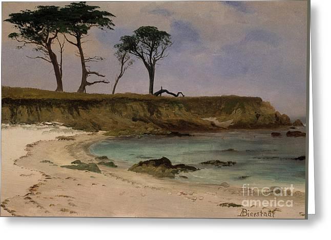 Sea Cove Greeting Card by Albert Bierstadt