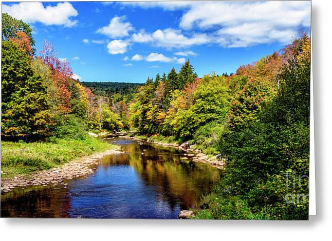 Shavers Fork Of Cheat River Greeting Card