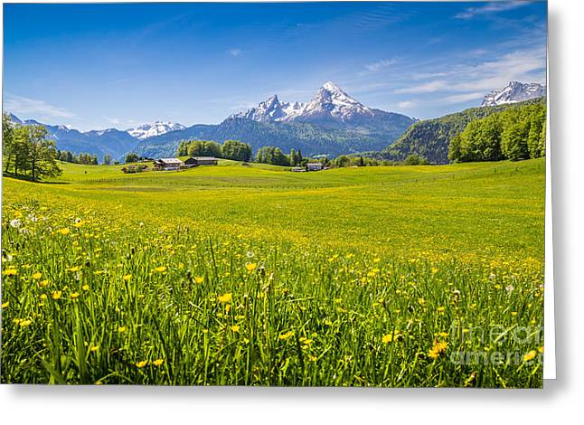 Springtime In The Alps Greeting Card
