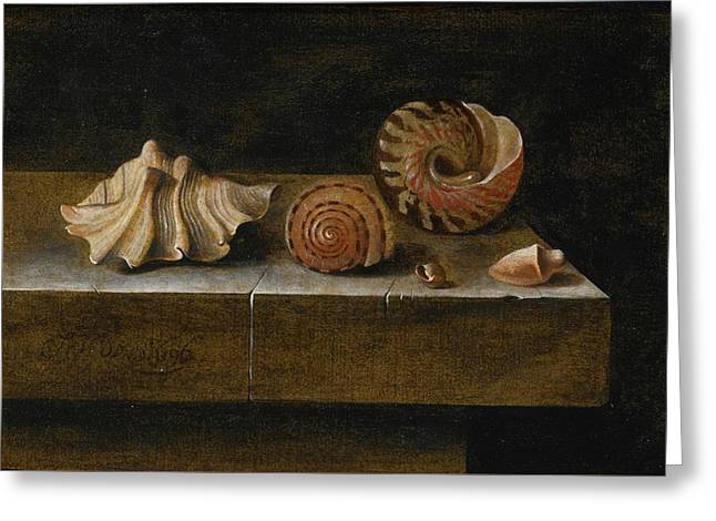 Still Life With Sea Shells Greeting Card by Adriaen Coorte