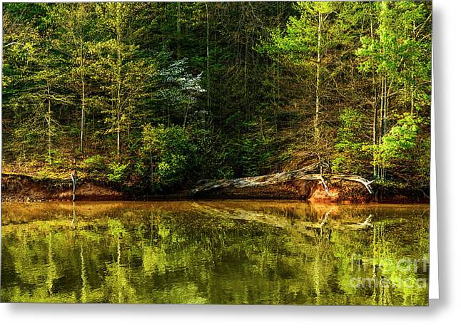 Stonewall Jackson Lake Greeting Card