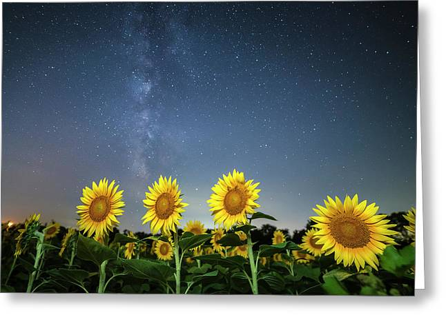 Sunflower Galaxy Iv Greeting Card