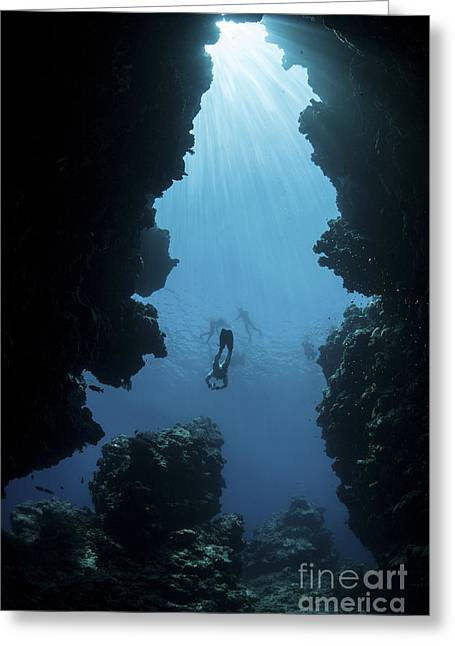 Sunlight Descends Underwater Greeting Card by Ethan Daniels