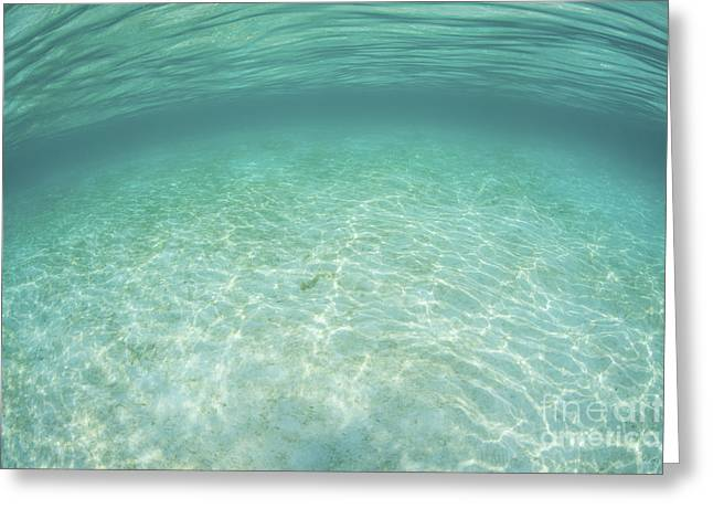Sunlight Ripples Across A Shallow Sand Greeting Card by Ethan Daniels