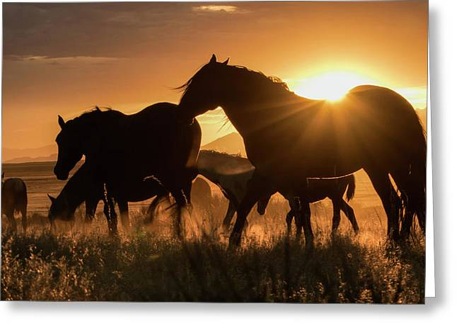 Sunset Band Greeting Card