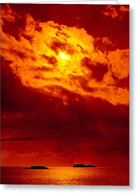 Sunset Over The Atlantic Ocean, Cat Greeting Card