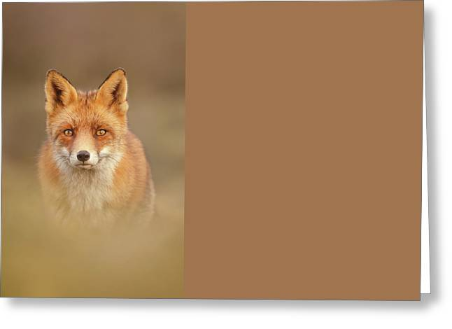 That Foxy Face Greeting Card by Roeselien Raimond