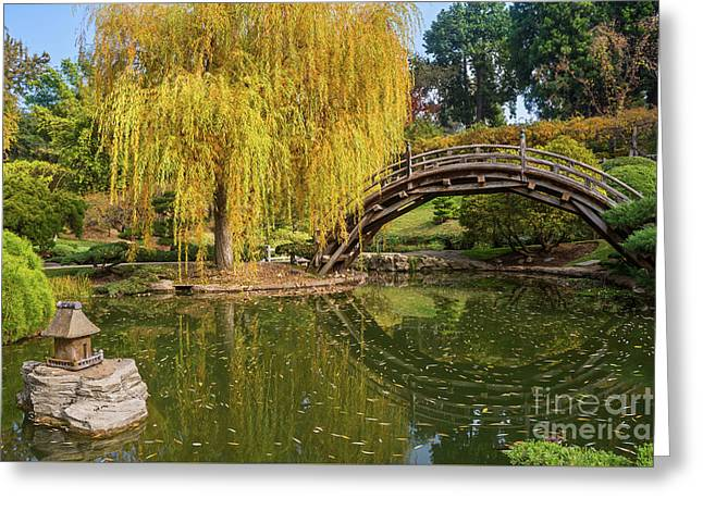 The Beautiful Fall Colors Of The Japanese Gardens In The Hunting Greeting Card by Jamie Pham