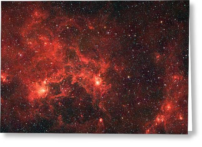 The Dragon Fish Nebula Greeting Card by American School