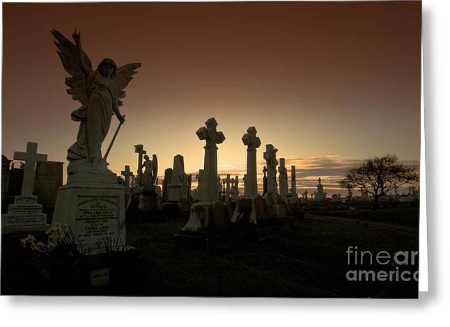 The Graveyard Greeting Card by Angel  Tarantella