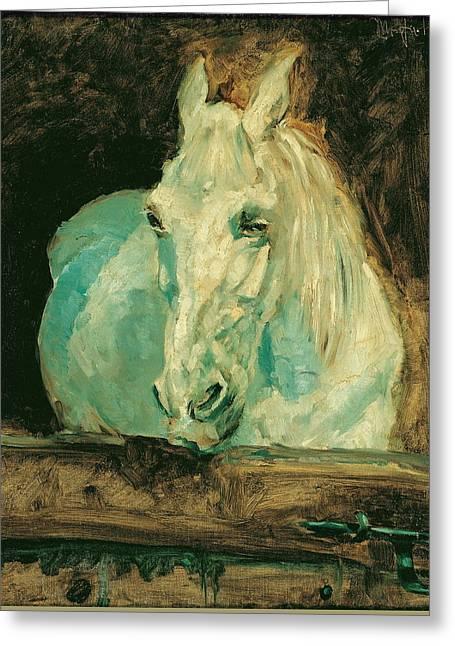 The White Horse Gazelle Greeting Card by Henri de Toulouse-Lautrec