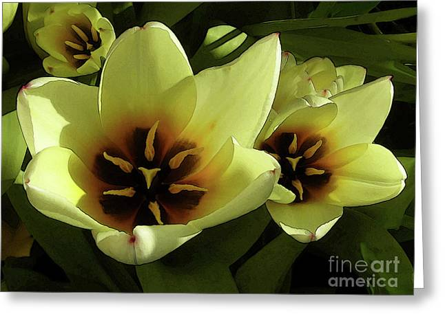 Tulip Lights #4 Greeting Card by Kim Tran