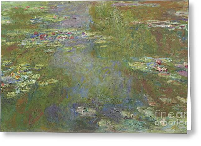 Water Lily Pond Greeting Card