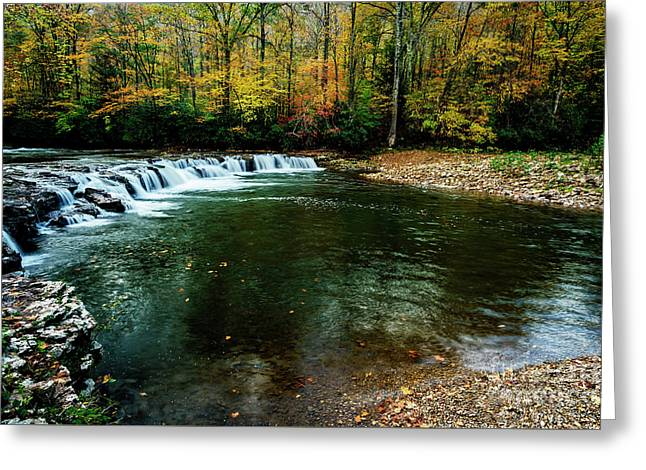 Whitaker Falls In Autumn Greeting Card