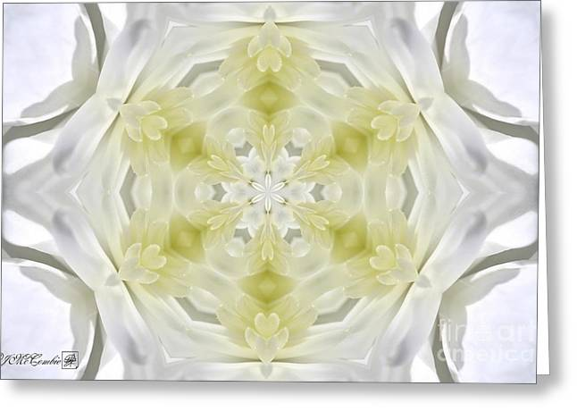 White Arctic Queen Kaleidoscope Greeting Card by J McCombie
