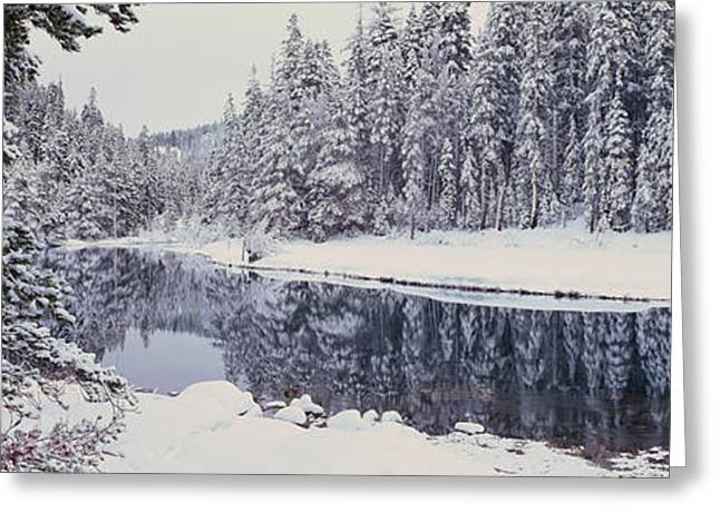 Winter Snowstorm In The Lake Tahoe Greeting Card