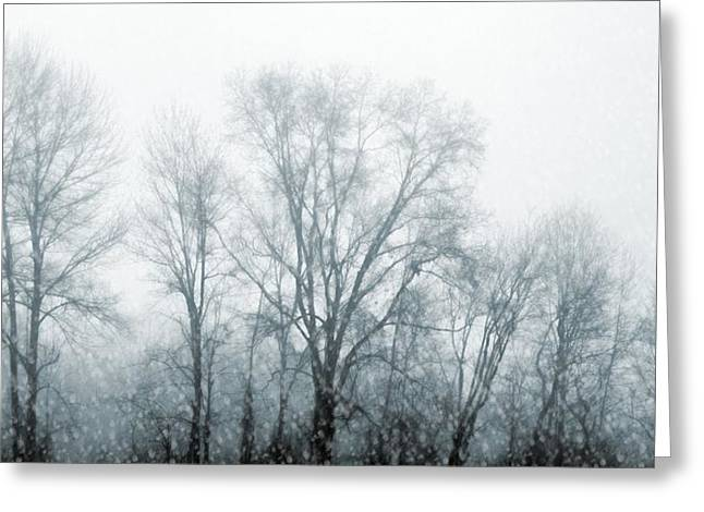Winter View Greeting Card by JAMART Photography