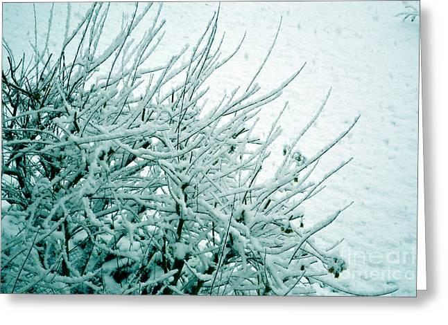 Greeting Card featuring the photograph Winter Wonderland In Switzerland by Susanne Van Hulst