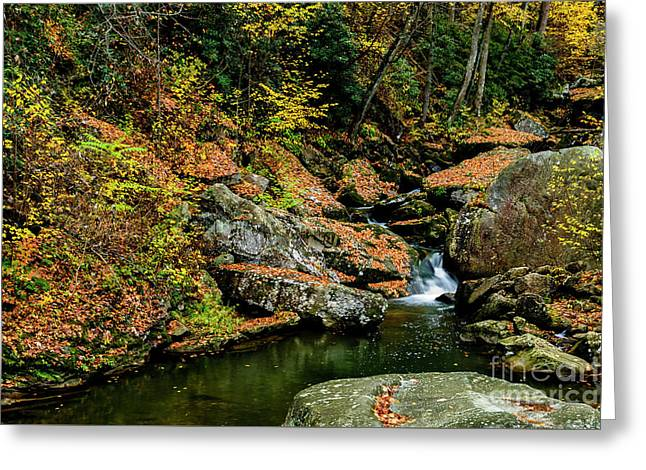 Wolf Creek New River Gorge Greeting Card by Thomas R Fletcher