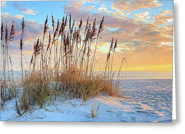 30 A In South Walton Greeting Card by JC Findley