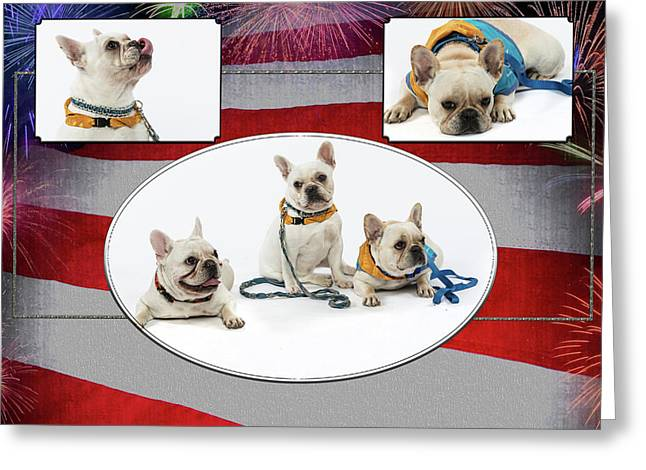 3010.069 Therapet Greeting Card by M K  Miller